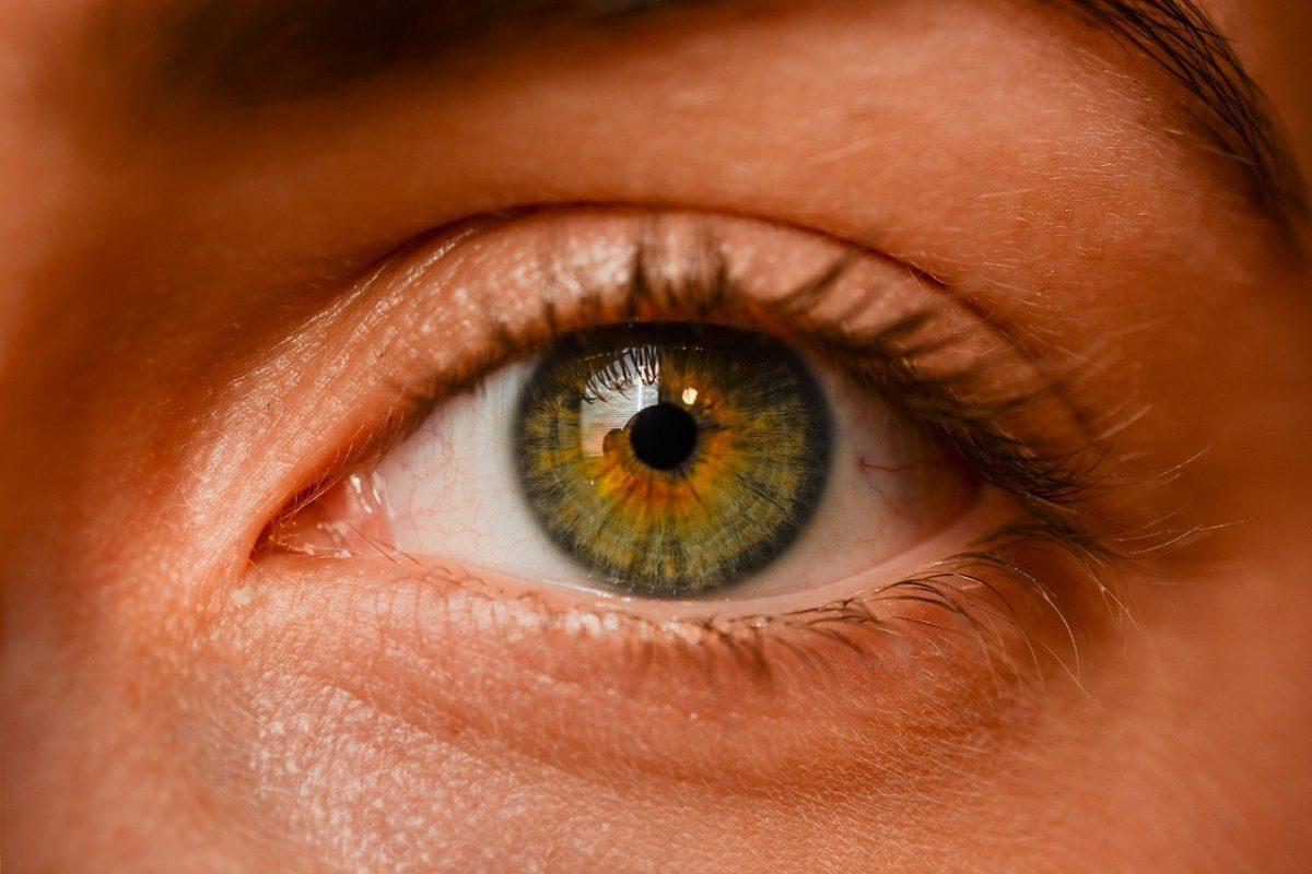 Oczy to ekstrawagancki organ. To dokładnie dzięki nim doświadczamy.